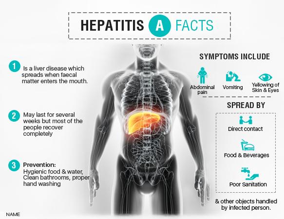 Best Food For Hepatitis C
